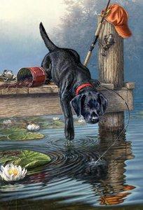 Schilderen op nummer Labrador Zwart