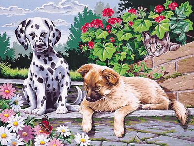 Schilderen op nummer Honden
