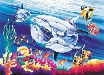 Schilderen op nummer Dolfijnen PL119