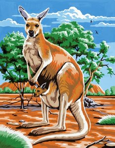 Schilderen op nummer Kangoeroe