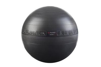 Pure2Improve Exercise Ball 65cm