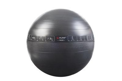 Pure2Improve Exercise Ball 75cm